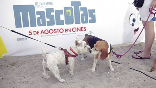 Fuente: http://cultura.elpais.com