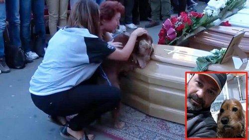 Un perro se niega a abandonar el ataúd de su amo, víctima del terremoto en Italia