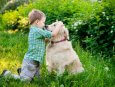 lenguaje-corporal-de-tu-perro
