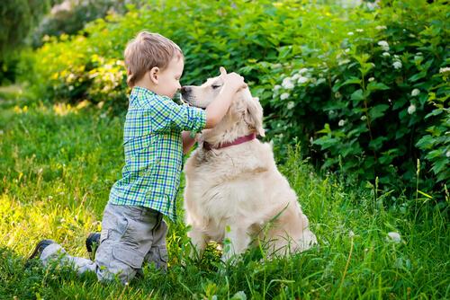 Tu hijo necesita entender el lenguaje corporal de tu perro