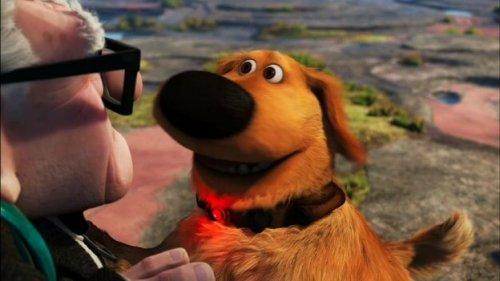 El famoso perro Dug de la película 'Up' se vuelve real