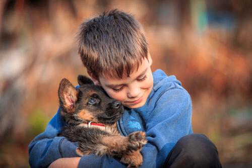 Perros adiestrados para estar con sordos