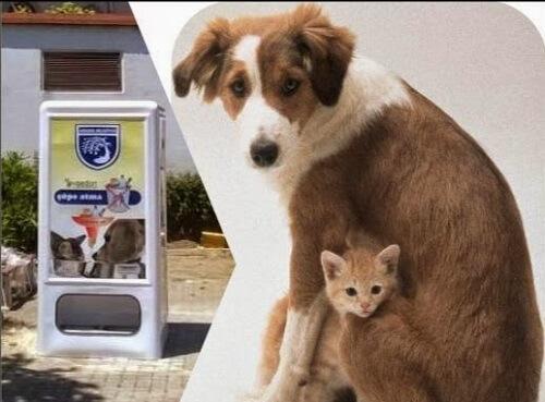 Ya hay una máquina expendedora de comida para mascotas en España