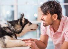 etologo perros
