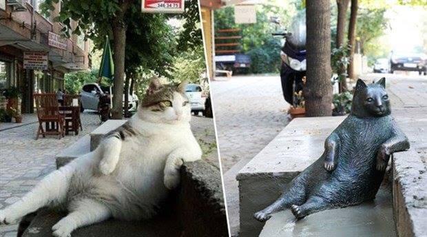 gata-famosa-que-tiene-su-estatua-2