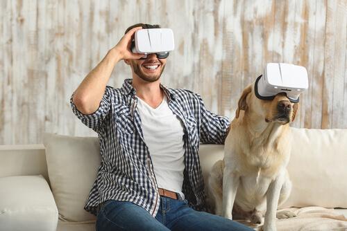 internet-a-traves-de-wifi-en-los-perros