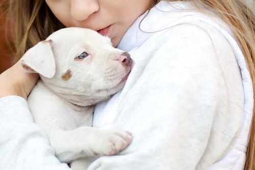 Los animales como terapia al Trastorno del Espectro Autista