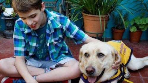 Una tierna historia de Felipe y su perro lazarillo