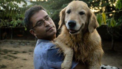 Un hombre recoge perros callejeros y ya tiene 735