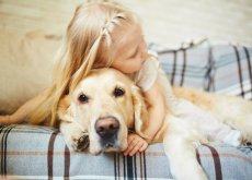 abrazar-a-tu-perro