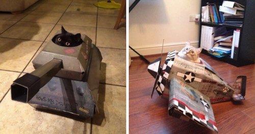 'Tanques' y 'aviones' para gatos