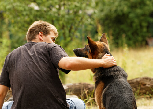 amante-dos-cães