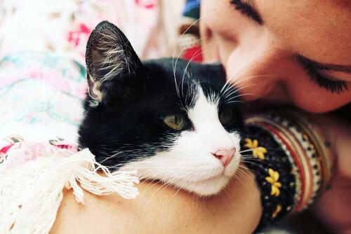 Lindo gatito… pero ¿nos quiere?