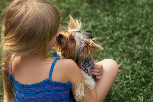 ¿Por qué mi hijo y el perro no se llevan bien?