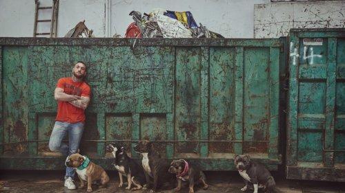 Hombre con perros