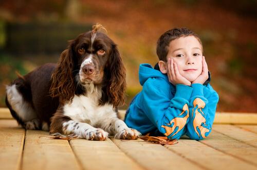 Perros que asisten a clases y ayudan a los niños