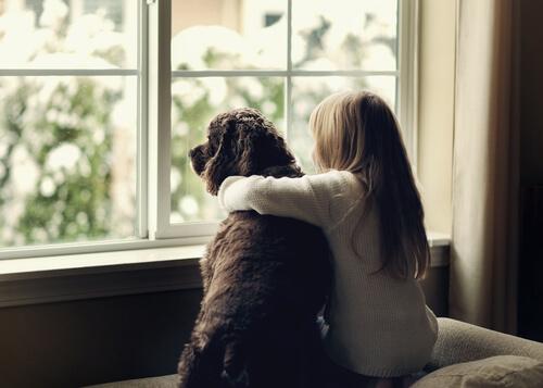 Acoso escolar y la terapia con perros