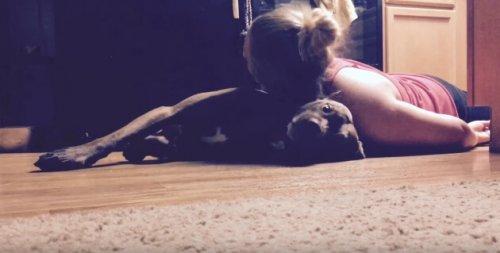Colt, el perro entrenado para asistir a su dueña