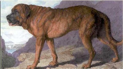 Pintura de perros extintos