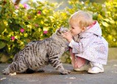 Un gato con tu bebe