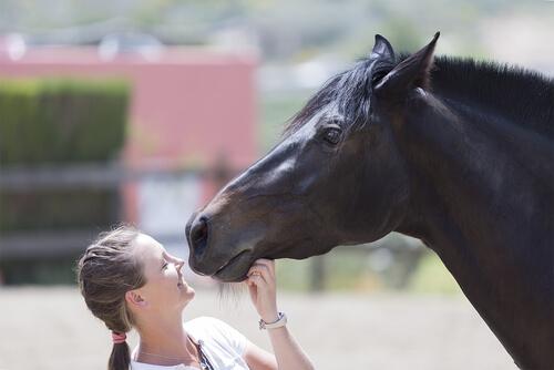 Mujer acariciando un caballo