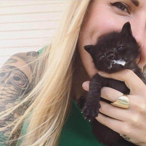 Kitten lady con un gatito negro
