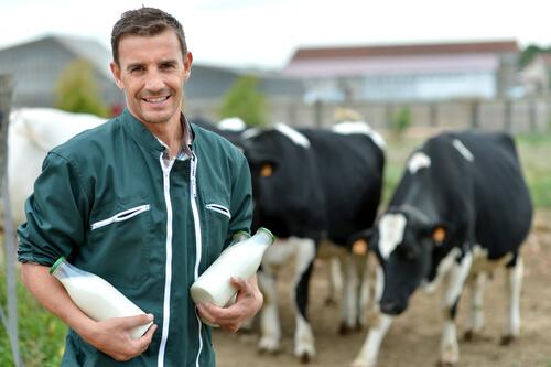 La lactancia en animales de granja