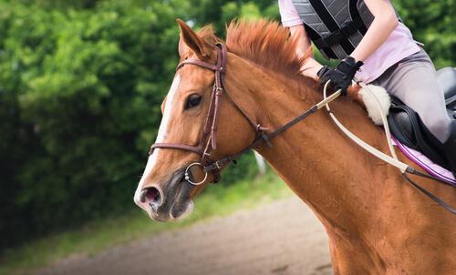 Persona montando a caballo