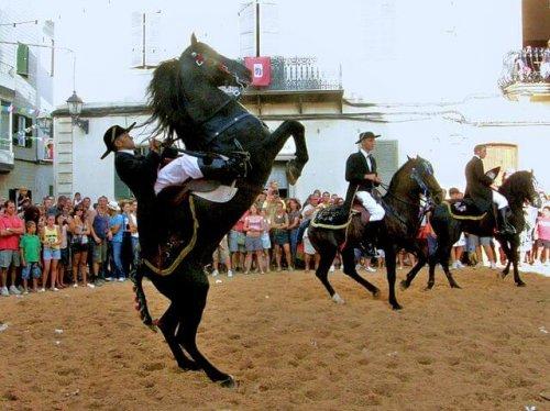 Razas de caballo españolas