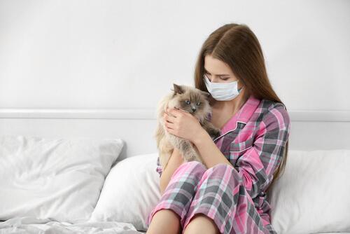 Causas de la alergia a gatos y consecuencias