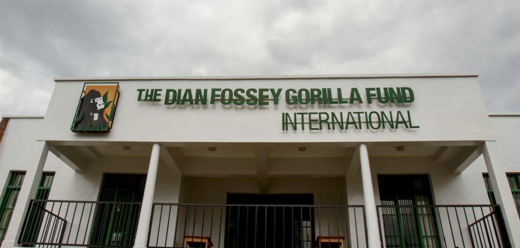 ¿Quién fue Dian Fossey?