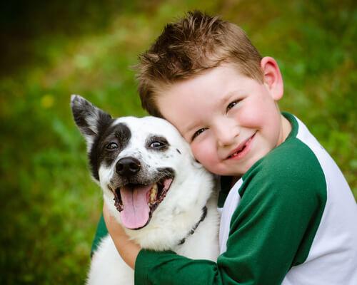 Perros ideales para niños pequeños: razas