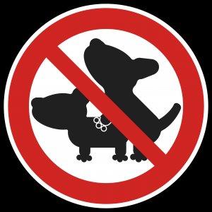 Satiriasis canina: consejos para calmar el apetito sexual de los perros
