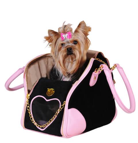 6c9502999 Es bueno llevar a tu perro en un bolso? - Mis animales