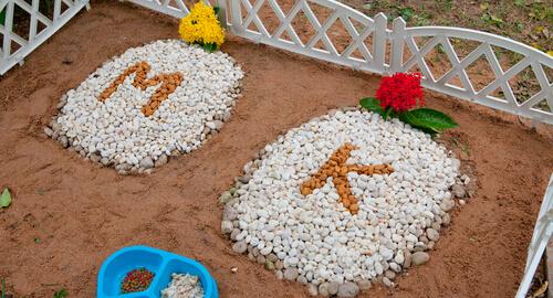 Cementerios para animales domésticos