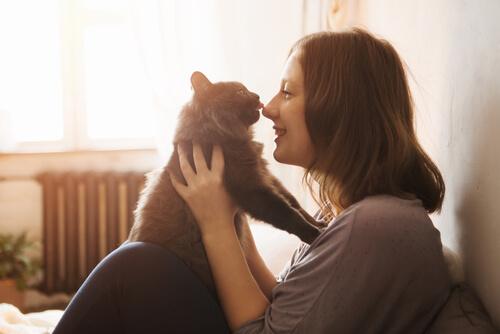 Cómo ganarse la confianza de un gato: consejos y pasos a seguir
