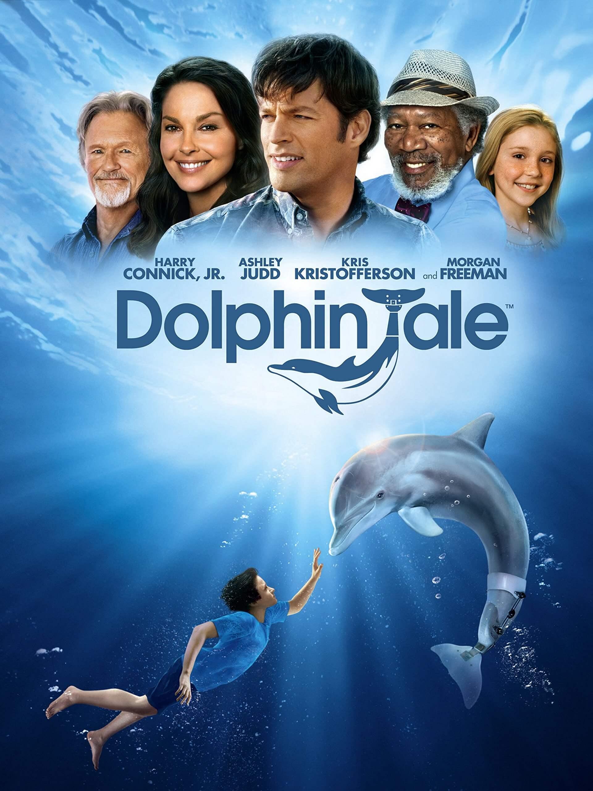 Delfin Winter: película
