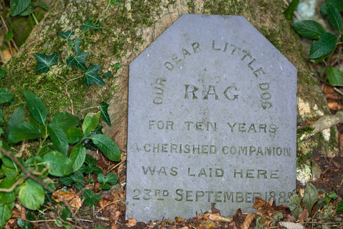 Tombstone for a dog