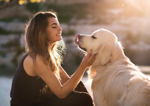 Ты можешь поговорить со своей собакой?