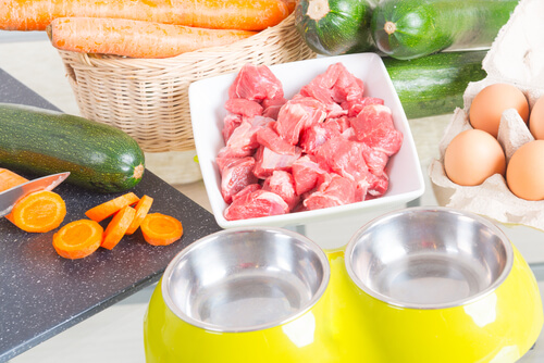 Recetas para dietas BARF de perros: cantidades