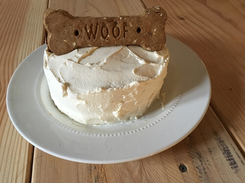 Homemade cake for dogs