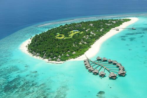 Coral de las islas Maldivas.