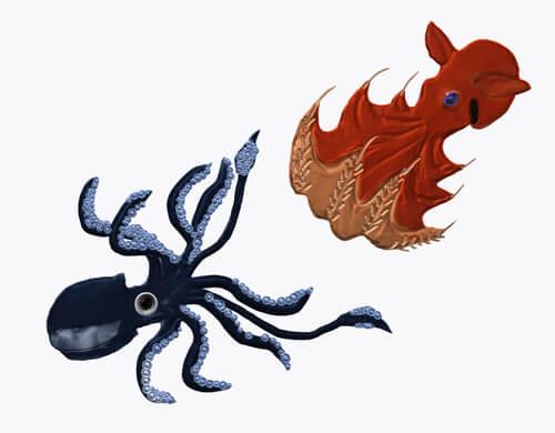¿Cuáles son las diferencias entre pulpo y calamar?