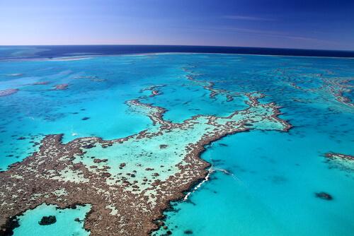 6 lugares donde ver arrecifes de coral