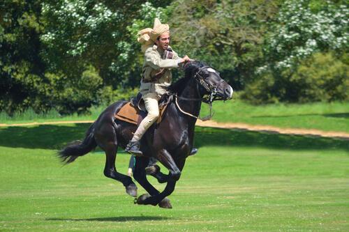 Juego de piquetas con caballos