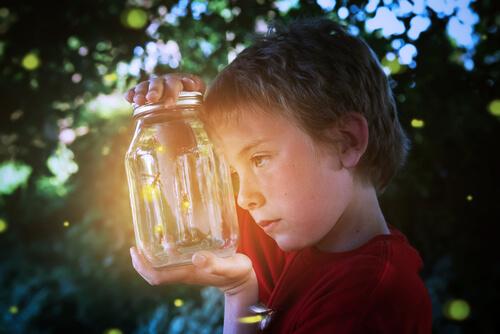 La luciérnaga, fuente de luz