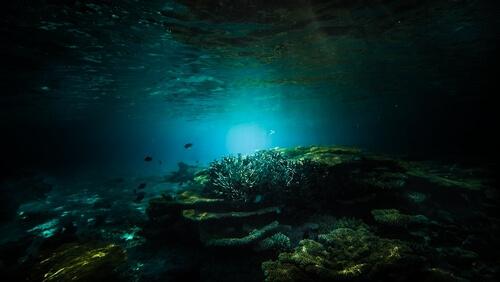 Profundidad del mar