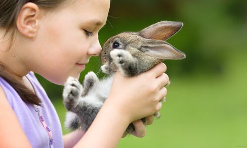 Actividades con conejos para niños
