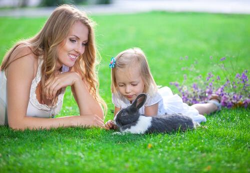 Consejos para jugar con tu conejo