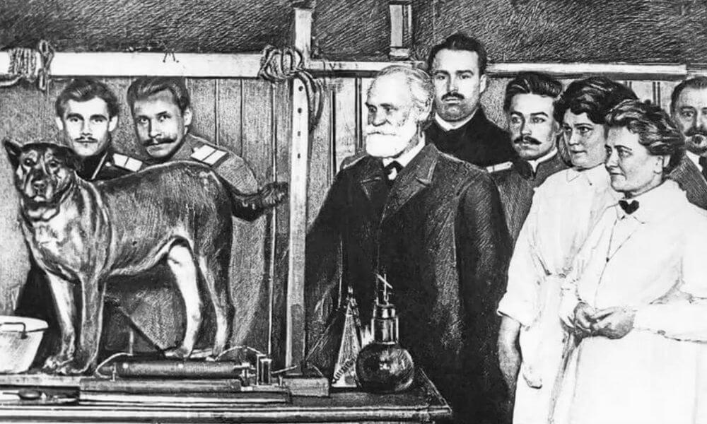 Ivan Pavlov y el entrenamiento en positivo para perros